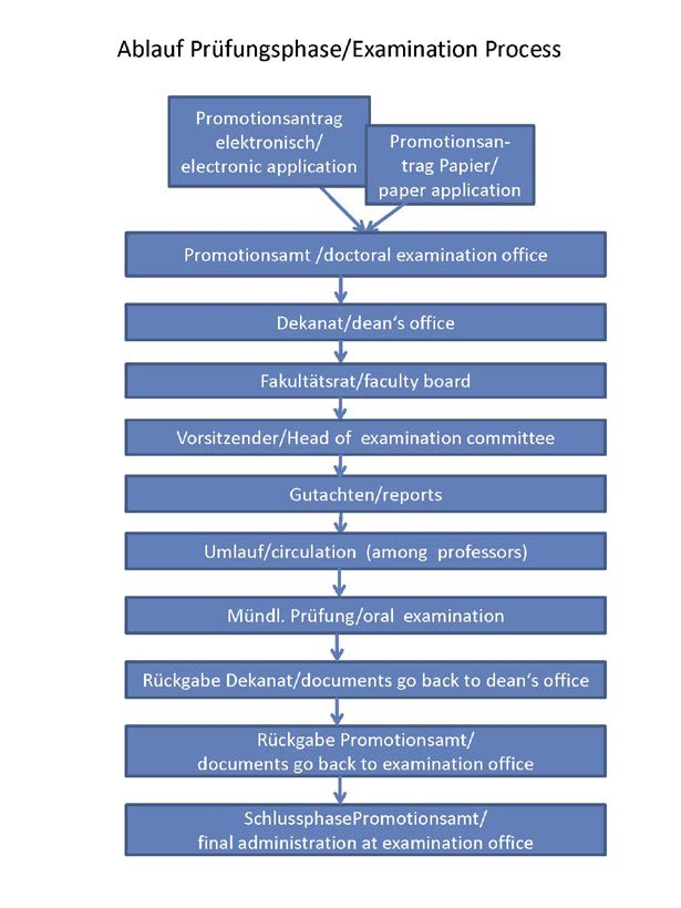 Schematic representation of the examination phase: In the doctoral office, in addition to the electronic doctoral application, the paper documents are processed and forwarded to the responsible dean's office. There they are forwarded to the faculty council for voting on the doctoral committee. Afterwards, the appointed chairperson collects the expert opinions and circulates the documents, where the professors decide on the acceptance of the dissertation. The oral examination then takes place and the documents are returned to the dean's office. The doctoral office then takes care of the remaining matters until the certificate is handed over.